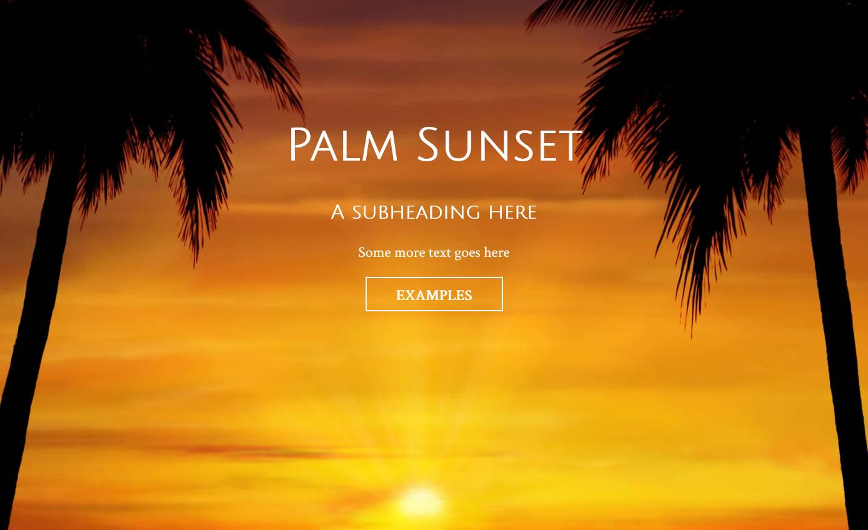 Palms_ss